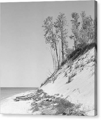 Lake Michigan Dunes Canvas Print by Richard Singleton