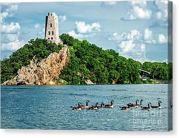 Lake Murray's Gaggle Of Geese Canvas Print by Tamyra Ayles