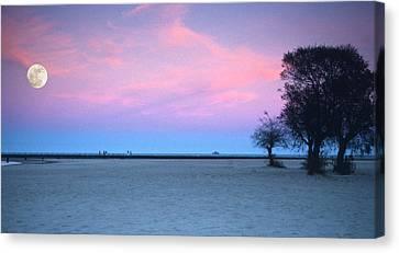 Lake Shore Evening Canvas Print by Donald Schwartz
