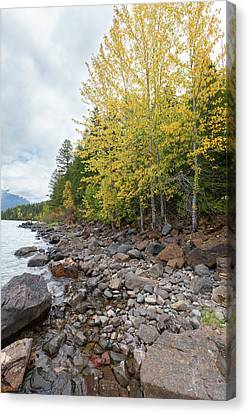 Canvas Print featuring the photograph Lake Shore by Fran Riley