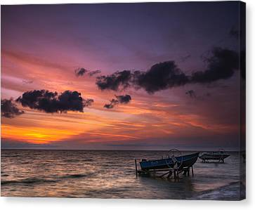 Lake St. Clair Sunrise Canvas Print by Cale Best