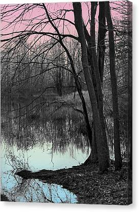 Lake Sunset Canvas Print by Terry Cork
