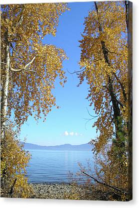 Lake Tahoe Autumn Canvas Print by Connie Handscomb