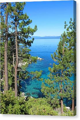 Lake Tahoe Nevada Canvas Print by Connor Beekman