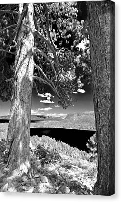 Canvas Print featuring the photograph Lake Tahoe by Sherri Meyer