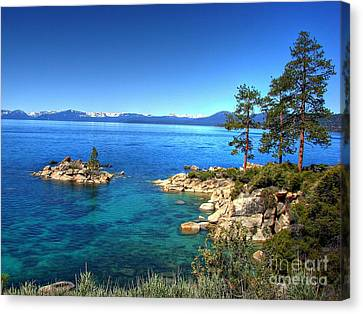 Lake Tahoe State Park Nevada Canvas Print by Scott McGuire