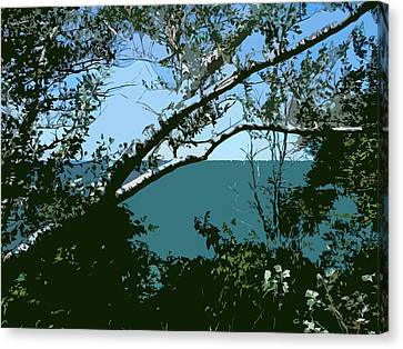 Lake Through The Trees Canvas Print by Michelle Calkins