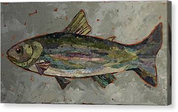 Lake Trout Canvas Print
