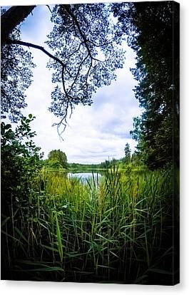 Lake View Canvas Print by Nicklas Gustafsson