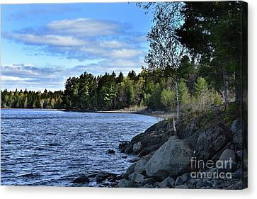 Lakeside Beauty Canvas Print by Skip Willits