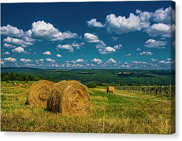Canvas Print featuring the photograph Lakeside Hayfield I by Steven Ainsworth