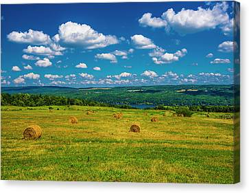 Canvas Print featuring the photograph Lakeside Hayfield II by Steven Ainsworth
