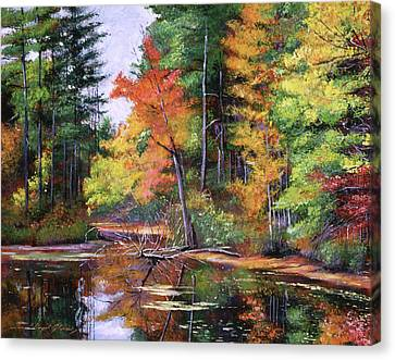 Lakeside Reflections Canvas Print by David Lloyd Glover