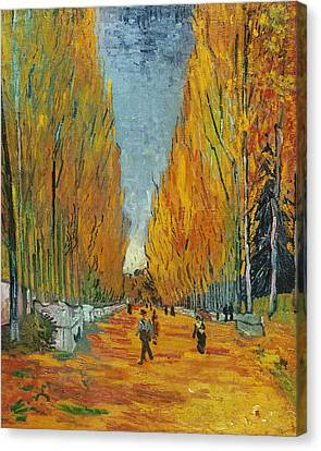 L'allee Des Alyscamps  Arles Canvas Print