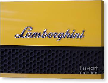Lamborghini Canvas Print by Andre Goncalves