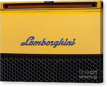 Lamborghini Canvas Print by David Millenheft