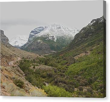 Canvas Print featuring the photograph Lamoille Canyon by Daniel Hebard