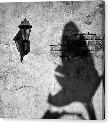 Lamp And Leaf Canvas Print by Dave Bowman