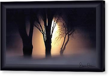 Lamplit Silhouetted Trees In Fog - Signed Limited Edition Canvas Print