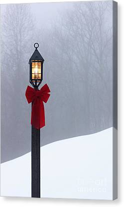 Lamppost In Snow Canvas Print by Will and Deni McIntyre