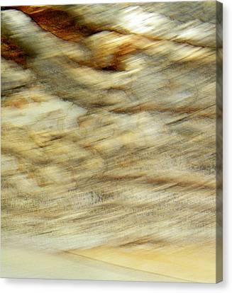 Canvas Print featuring the photograph Land And Sky by Lenore Senior