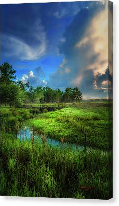 Land Of Milk And Honey Canvas Print by Marvin Spates