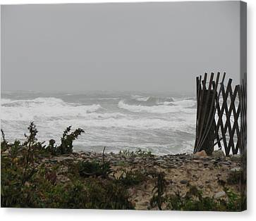 Land Vs Sea Canvas Print