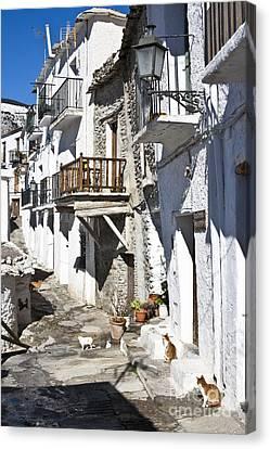 Canvas Print featuring the photograph Street In Capileira Puebla Blanca by Heiko Koehrer-Wagner