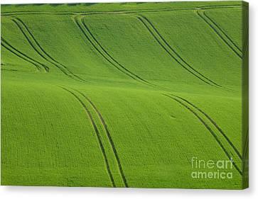 Landscape 5 Canvas Print by Jean Bernard Roussilhe
