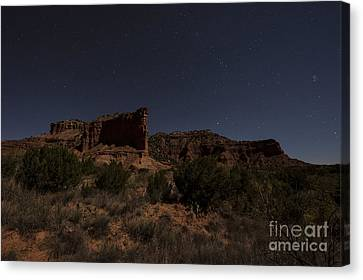 Landscape In The Moonlight Canvas Print by Melany Sarafis