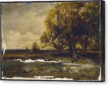 Landscape With Tree  Canvas Print by MotionAge Designs
