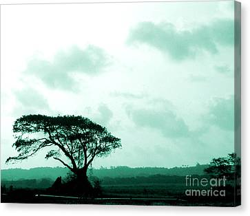 Landscape With Tree Canvas Print by Barbara Marcus