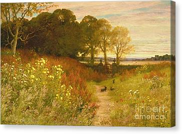 Rural Canvas Print - Landscape With Wild Flowers And Rabbits by Robert Collinson