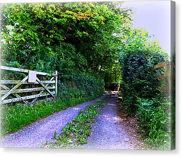 Lane Near Monmouth Canvas Print by Andrew Read