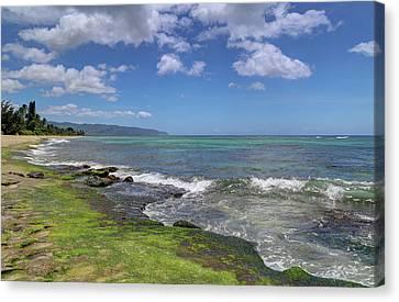 Laniakea Beach Where The Turtles Live Canvas Print