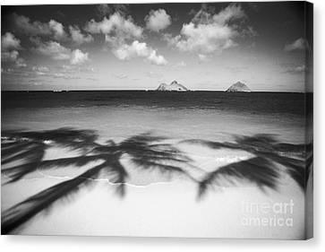 Lanikai Beach - Bw Canvas Print by Dana Edmunds - Printscapes