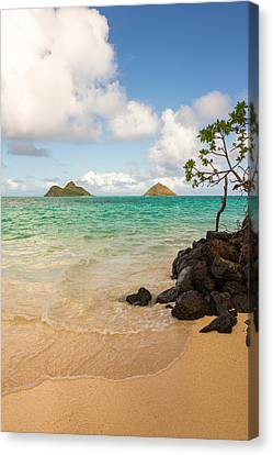 Water Scene Canvas Print - Lanikai Beach 1 - Oahu Hawaii by Brian Harig