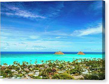 Canvas Print featuring the photograph Lanikai Beach From The Pillbox Trail by Aloha Art