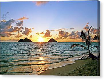 Lanikai Sunrise  Canvas Print by Kevin Smith