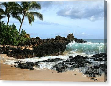 Hawaiian Rock Art Canvas Print - Lapiz Lazuli Stone Aloha Paako Aviaka by Sharon Mau
