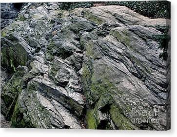 Large Rock At Central Park Canvas Print by Sandy Moulder