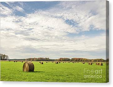 Canvas Print featuring the photograph Large, Round, Bales Of Hay Under A Blue Sky With Clouds by Sue Smith
