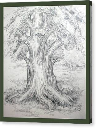 Large Shady Tree Canvas Print by Ruth Renshaw