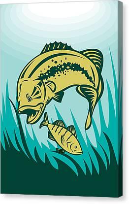 Largemouth Bass Preying On Perch Fish Canvas Print by Aloysius Patrimonio