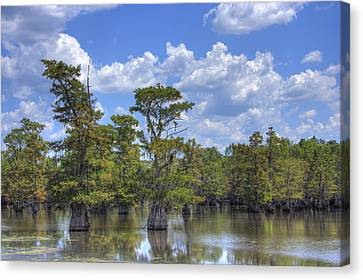 Largemouth Country Canvas Print