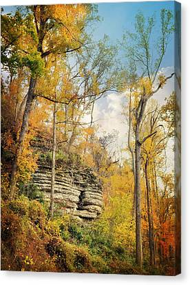 Larue Pine Hills 3 Canvas Print by Marty Koch