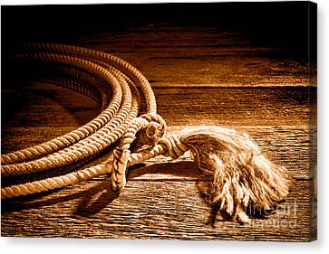 Rawhide Canvas Print - Lasso - Sepia by Olivier Le Queinec