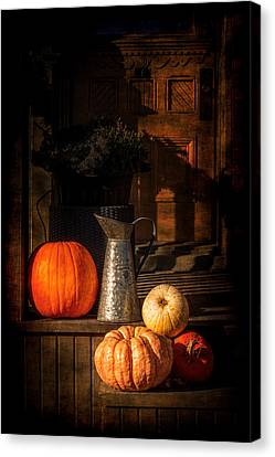 Last Autumn Sunlight Canvas Print by Celso Bressan