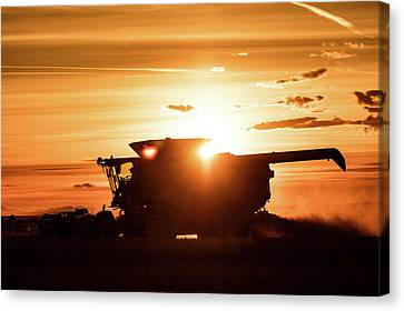 Last Bit Of Sun Canvas Print by Todd Klassy