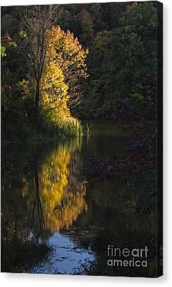Canvas Print featuring the photograph Last Light - D009910 by Daniel Dempster